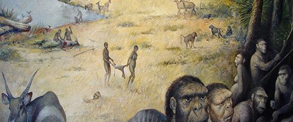 Գիտնականները Եթովպիայում հայտնաբերել են հնագույն «կապկամարդու» մնացորդներ