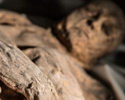 Կանադայում մոտ 50 հազար տարեկան մումիաներ են գտել